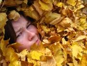 fall_weather