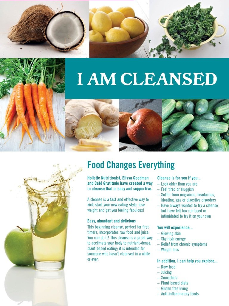 Cleanse-Web-Brochure