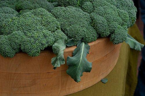 broccoli-at-the-farmers-market-flickr-clara-s