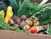 Box-of-organic-vegetables-0012
