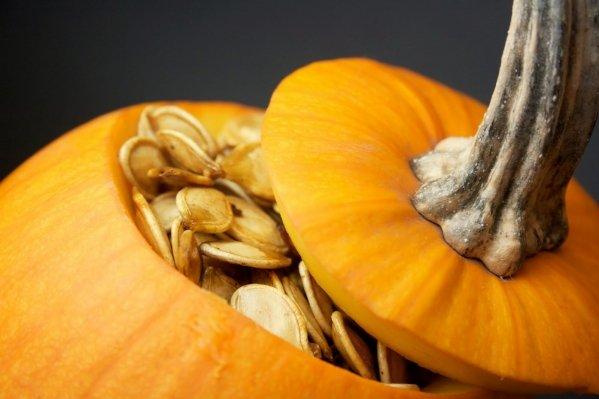 Crack Open The Pumpkins Elissa Goodman