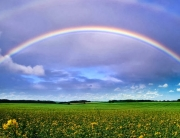 11-rainbow