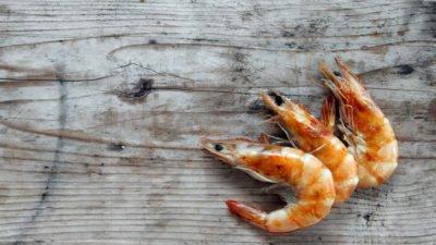 Should You Be Eating Shrimp?